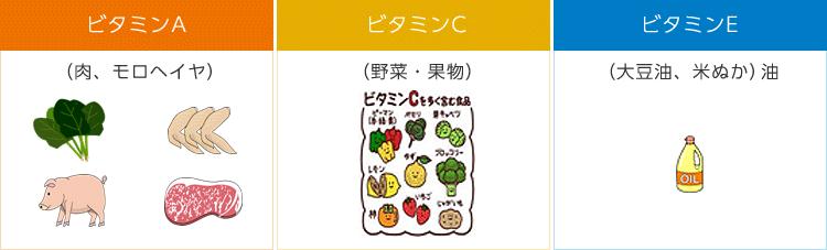 ビタミンA(お肉・モロヘイヤ)ビタミンC(野菜・果物)ビタミンE(大豆油、米ぬか)油